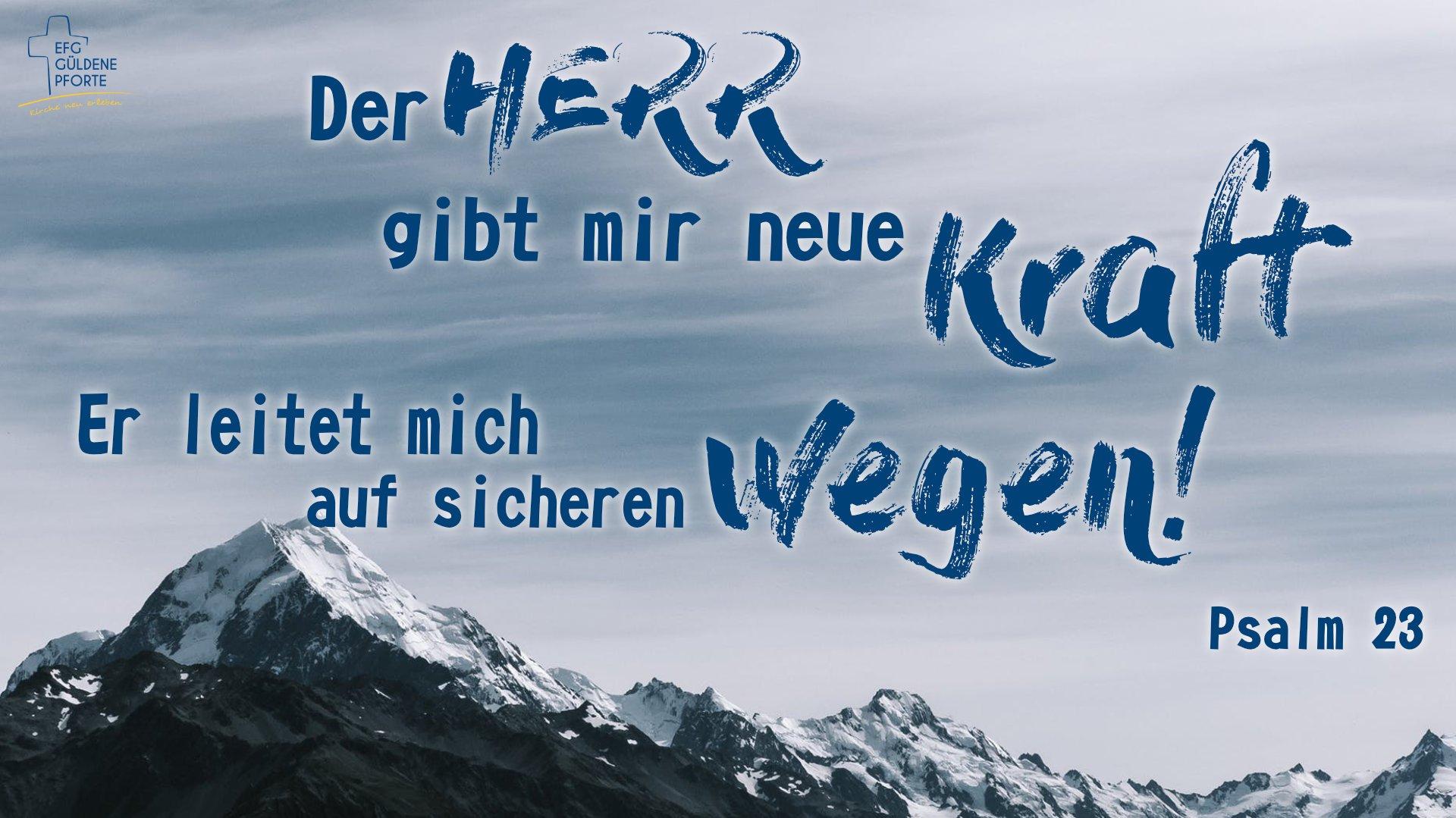 Schaukasten003